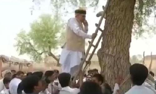 """被印度网友传为笑谈的""""部长上树打电话""""视频截图。"""