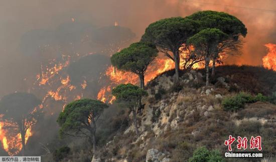意大利南部森林火灾继续肆虐 已经造成2人遇难
