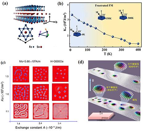 结构纳米磁畴共存的状态;(d)随外加磁场的增大,那些拓扑平庸磁泡会