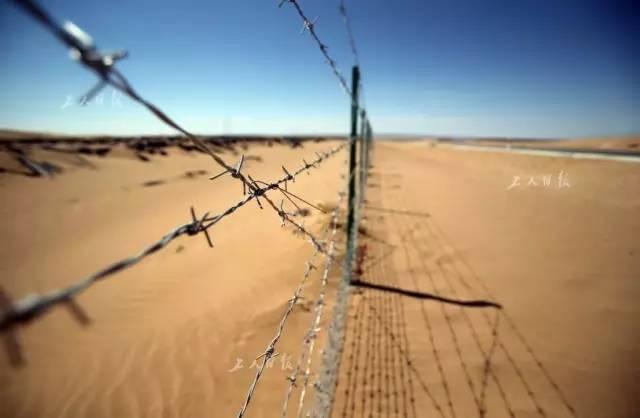 防止动物进入高速的围栏。