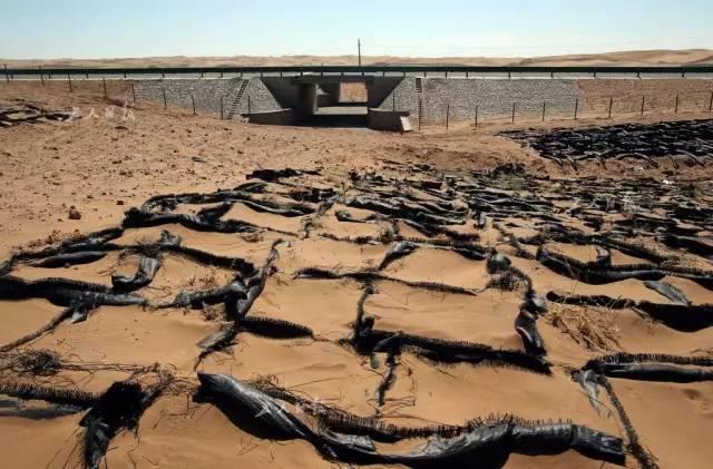 在穿越沙漠路段,都有鳍形沙袋防风固沙,并且建有动物迁徙通道。