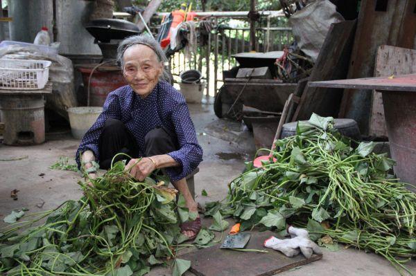 中国巴马,一名百岁老人在准备蔬菜。(《华尔街日报》网站)