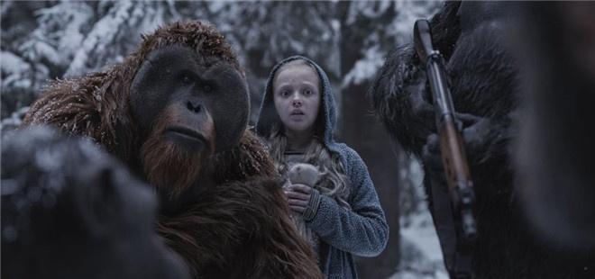 《猩球崛起3》剧照