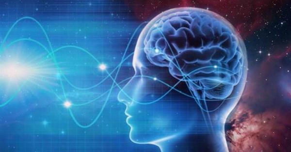 利用脑电波,是福还是祸—新闻—科学网