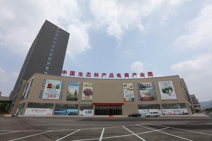 """重庆、安徽林业信息化创新""""互联网+""""发展模式"""
