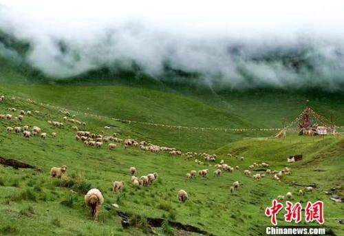 材料图:夏日的祁连山。郎文瑞 摄