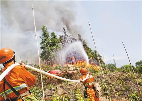 我市举行大规模森林火灾应急演练