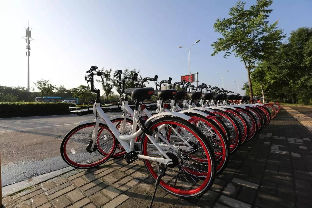 共享单车有2000万种死法,但死因通常只有一个