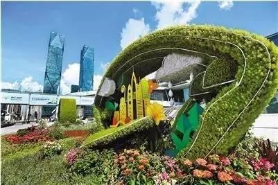 深圳植物家底究竟有多少?这趟芳香列车带你认识身边的绿叶红花