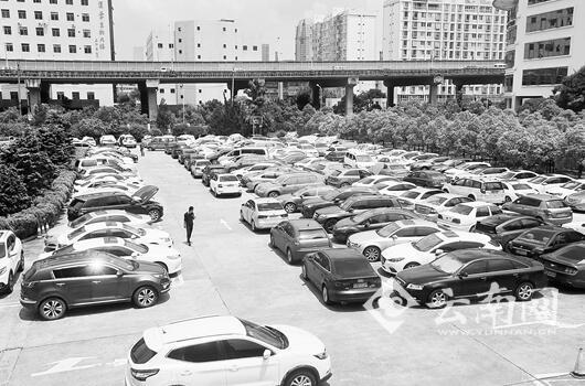 二环西路平安产险云南分公司停车场,这几天停满了泡水车。