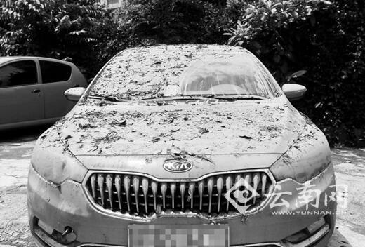 车身满是淤泥