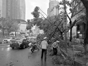 狂风暴雨突袭重庆 今明雷雨相伴