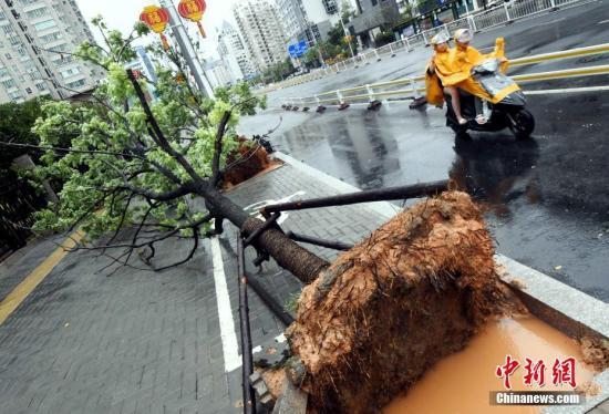 """台风""""纳沙""""登陆福建 福州机场取消121个航班"""