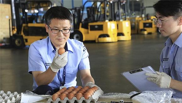 禽流感引发鸡蛋涨价供货短缺 韩国取消进口关税