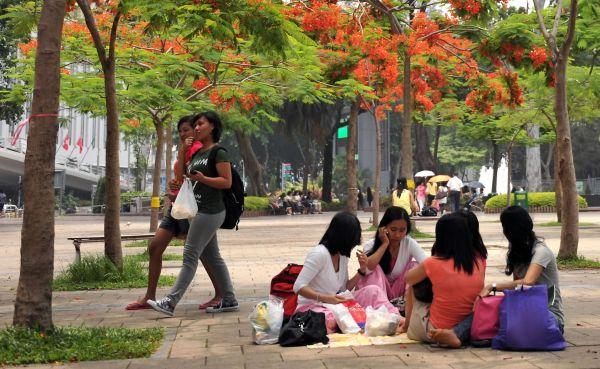 资料图片:在香港维多利亚公园休息的菲佣。新华社记者 陈晓伟 摄
