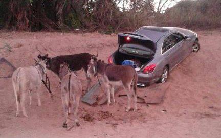 几头驴拉着被盗汽车,车陷入沙子动弹不得。(图片来源:英国媒体)