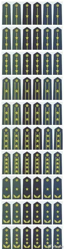 07式陆海空军官常服肩章。