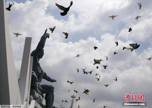 日本长崎和平纪念公园内放飞和平鸽。
