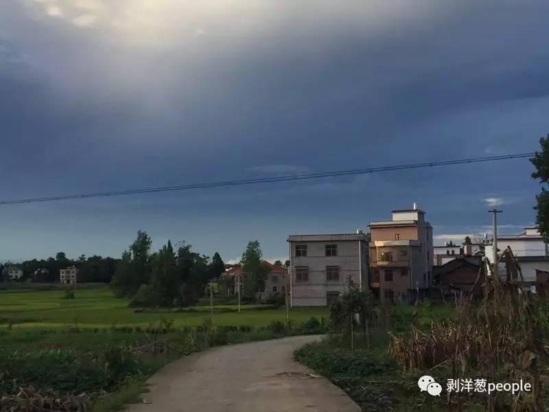 林华蓉的村庄。