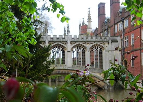 材料图:英国剑桥大学圣约翰学院中之叹息桥 新华社记者 殷刚 摄