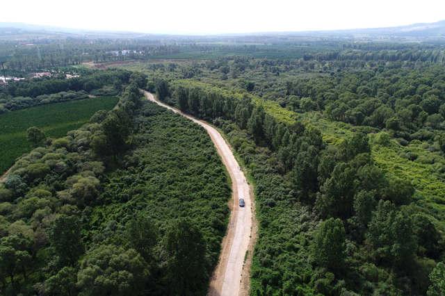 车辆行驶在山西省右玉县苍头河生态走廊(7月21日摄)。 新华社记者詹彦摄