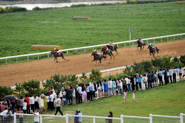 在山西省右玉县玉龙马园,观众们在欣赏2017年玉龙国际赛马公开赛(7月22日摄)。 新华社记者詹彦摄