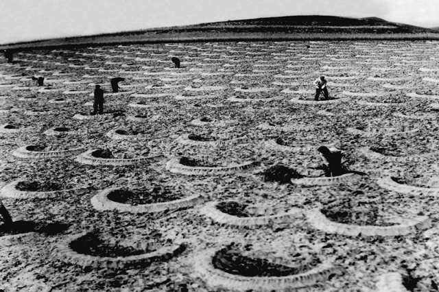 20世纪六七十年代,右玉县群众在荒山植树(翻拍照片)。 新华社发