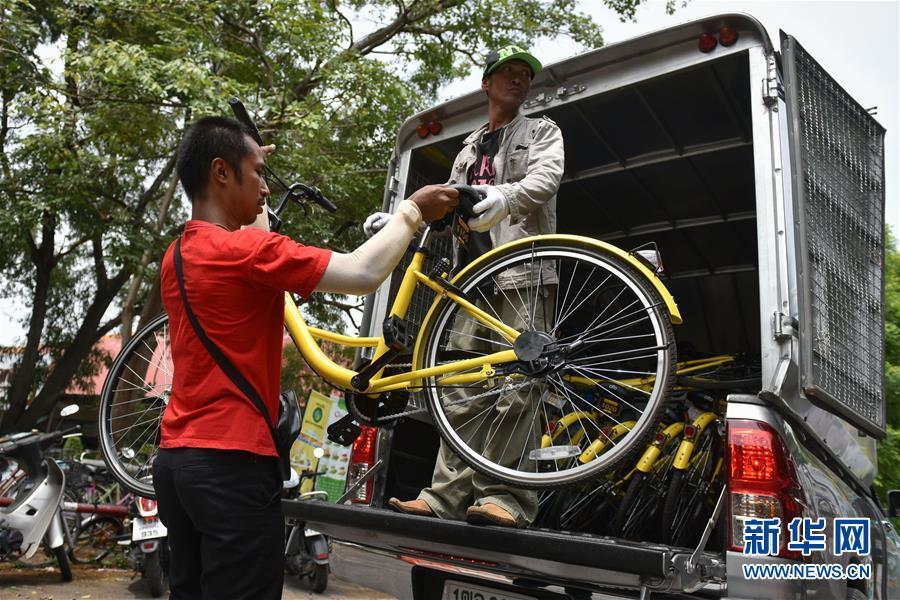 8月15日,在泰国曼谷之泰国国立法政大学,两名工人口投放ofo小黄车。 新华社记者李芒茫摄