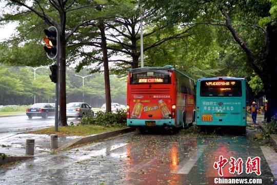 深圳全市进入台风特殊紧迫防御状态。 陈文 摄