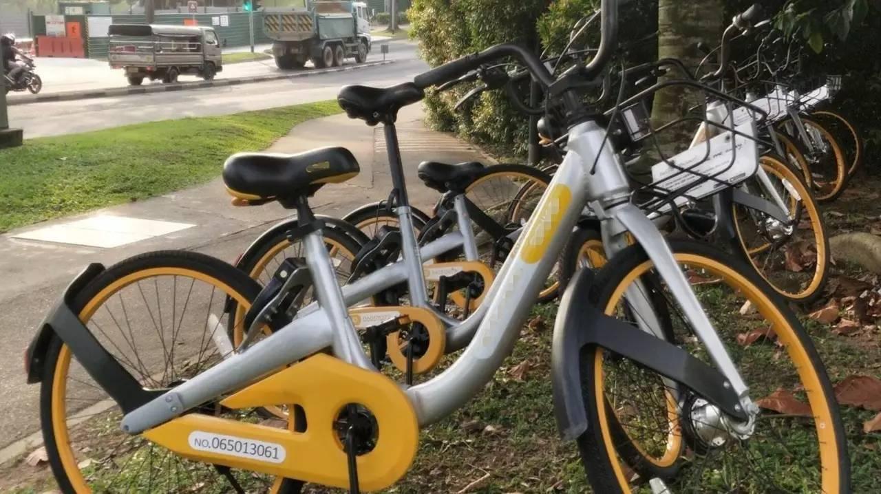 新加坡随意乱停的共享单车