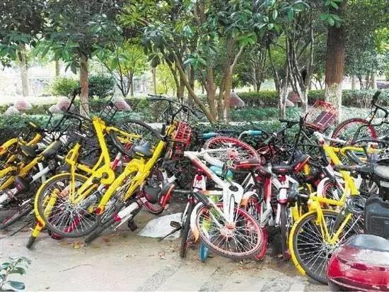 自行车 550_412