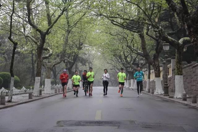 青岛马拉松路线正式发布!报名已经开始!将抽签选