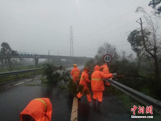 四天两遇台风 广州启动二级应急响应