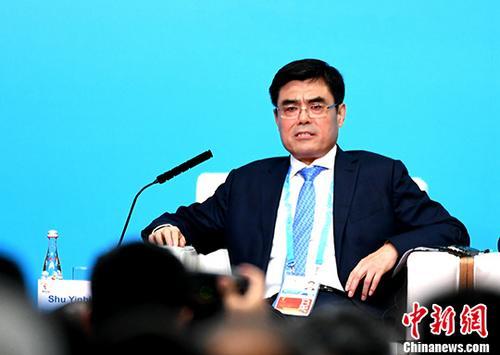 资料图:国家电网公司董事长舒印彪。 中新社记者 王东明 摄