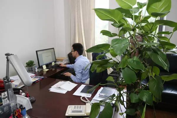 中央纪委八室工作人员在工作。