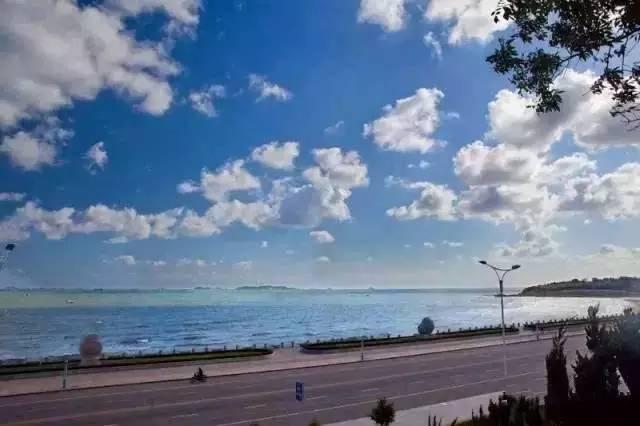 这条路,可以算得上最具特色的一段滨海路。
