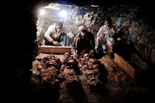 埃及发现古墓:已有3500年历史 出土木乃伊
