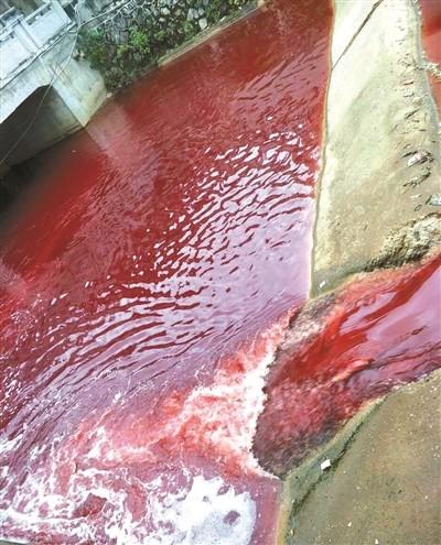 """九江学院门口的濂溪河河水变成""""血红色"""""""