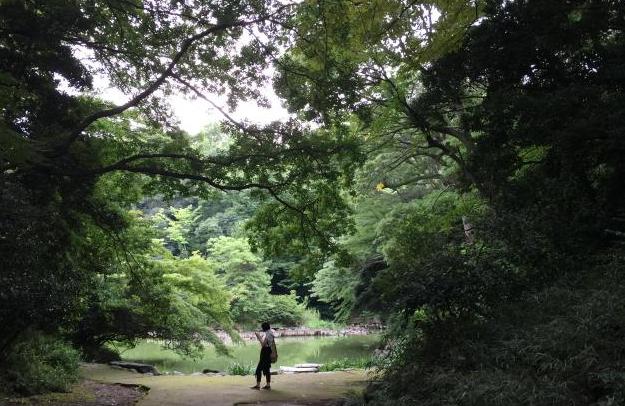 东京大学三四郎池