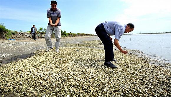 蓬莱漏油事件6年:渔民与康菲石油对薄公堂索赔1.7亿