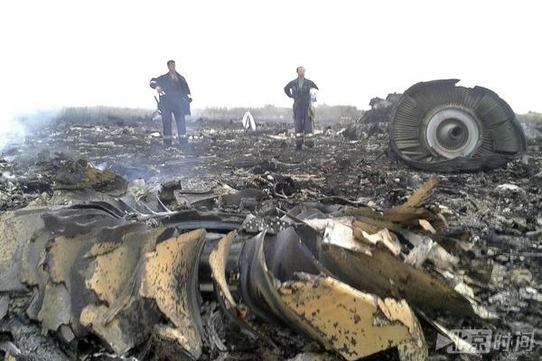 5国将签署协议起诉俄罗斯 让其为MH17空难负责