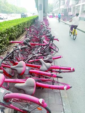 共享单车。图片来源:北京晨报