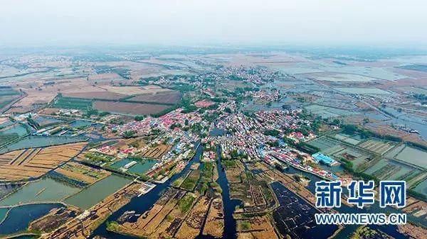 这是河北雄安新区白洋淀内的乡村(4月9日摄)。