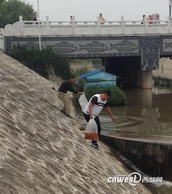 宝鸡一企业将污水偷排河道 被责令投放鱼苗