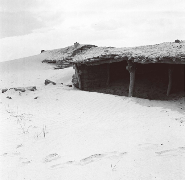 1970年月初,鄂尔多斯市下辖伊金霍洛旗由于过分开垦和放牧,植被遭到严重破损,形成沙进人退的严重结果。 伊金霍洛旗委宣传部 供图
