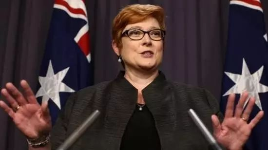 澳大利亚国防部长佩恩