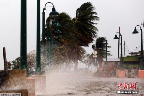 """美国家飓风中心:飓风""""玛丽亚""""袭击波多黎各"""