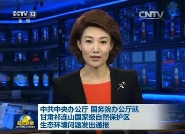 △王三运落马后,祁连山问题上了新闻联播