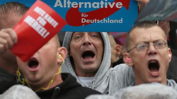 """德国右翼民粹主义""""另类选择党""""选民。(图片来源:法国国际广播电台)"""