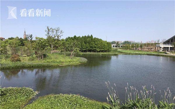 上海长兴岛首个湿地公园一期工程完工